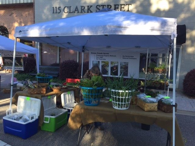 Cross Creek Acres had vegetables for sale